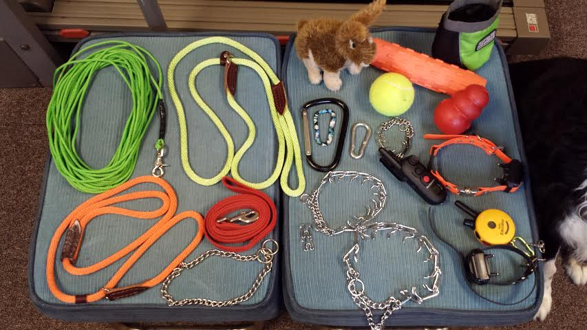 Helpful Dog Training Tools